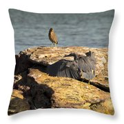 Challenge For The Throne Throw Pillow