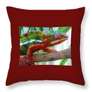 Chameleon Close Up Throw Pillow