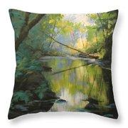 Champagne Creek Throw Pillow