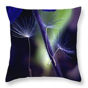 Chances Are... Throw Pillow