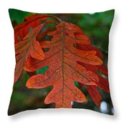 Changing Oak Throw Pillow
