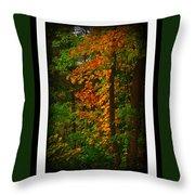 Changing Seasons Throw Pillow