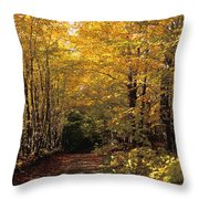 Changing Trees Throw Pillow