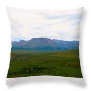 Chapters Of Earth Throw Pillow