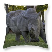 Charging Rhino. Throw Pillow