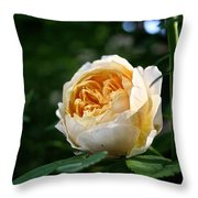 Charles Darwin Rose Throw Pillow