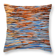 Charles Reflections Throw Pillow