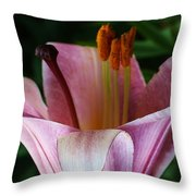 Charming Lily Throw Pillow