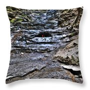 Chasing The Eternal Flame At Chestnut Ridge Park Throw Pillow