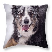Chasing The Snow Throw Pillow by Joye Ardyn Durham