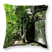 Chatfield Rock Face Throw Pillow