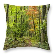 Chatooga Forest Trail Throw Pillow