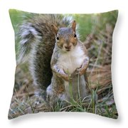 Checking Things Out Throw Pillow