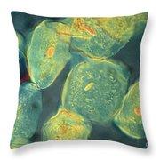 Cheek Cells Throw Pillow