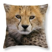 Cheetah Acinonyx Jubatus Ten To Twelve Throw Pillow