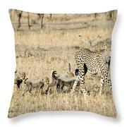 Cheetah Mother And Cubs Throw Pillow
