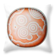 Chemical Waves In Bz Reagent 5 Of 9 Throw Pillow