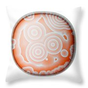 Chemical Waves In Bz Reagent 6 Of 9 Throw Pillow