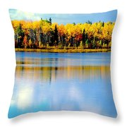 Chena Lake Drama Lll Throw Pillow