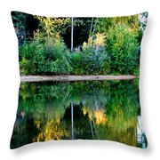 Chena River View Throw Pillow
