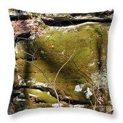 Cherokee Face Throw Pillow