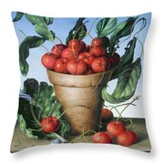 Cherries In Terracotta With Blue Flower Throw Pillow
