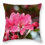 Cherry Blossom Greeting Card Blank With Decorations Throw Pillow
