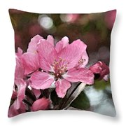 Cherry Blossom Photo Art And Blank Greeting Card Throw Pillow