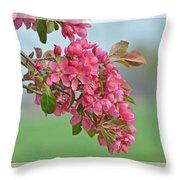 Cherry Blossom Spring Photoart Throw Pillow