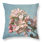 Cherry Blossoms Throw Pillow by Kim Hojnacki