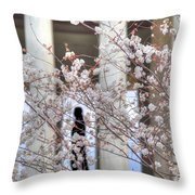 Cherry Blossoms Washington Dc 1 Throw Pillow