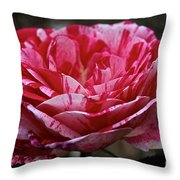 Cherry Chip Scentimental Throw Pillow