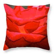 Cherry Red Rose Throw Pillow