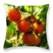 Cherry Tomatoes On The Vine Throw Pillow