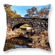 Chester County Bow Bridge Throw Pillow
