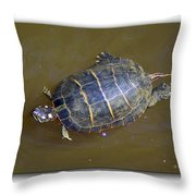 Chester River Turtle Throw Pillow