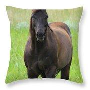 Chestnut Mare Throw Pillow