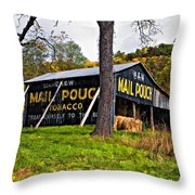 Chew Mail Pouch Painted Throw Pillow