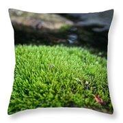 Chia Rock Throw Pillow