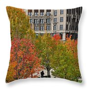 Chicago In Autumn Throw Pillow