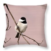 Chick In Pink Throw Pillow