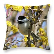 Chickadee Among The Blossoms Throw Pillow