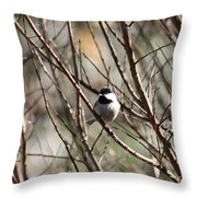 Chickadee Sunshine Throw Pillow
