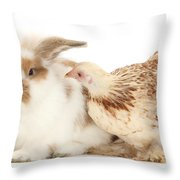 Chicken And Rabbit Throw Pillow