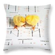 Chicken Genetics Throw Pillow