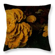 Chicken Of Woods 1 Throw Pillow