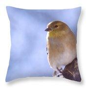 Chickie Chickie Throw Pillow