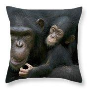 Chimpanzee Female Holding Infant Throw Pillow