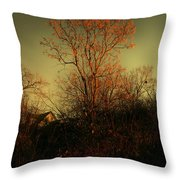 Chinaberry At Sunset Throw Pillow