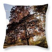 Chinbrook Meadows Throw Pillow